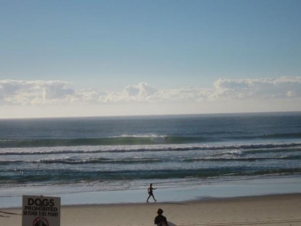 Surfers Paradise ドルフィン前
