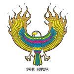 SEA HAWK Ⅱ ライディング映像