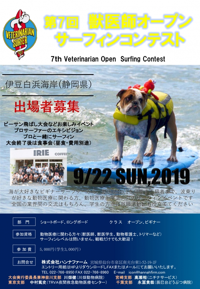 Veterinarian Surfer Contest
